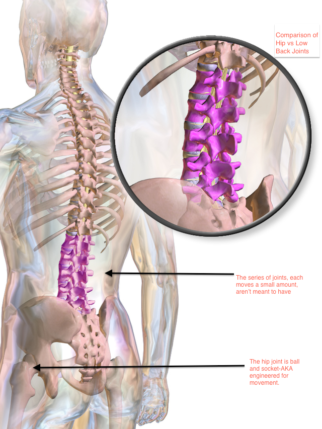 Video] Save Your Spine, Use Your Hips - ProActive Chiropractic